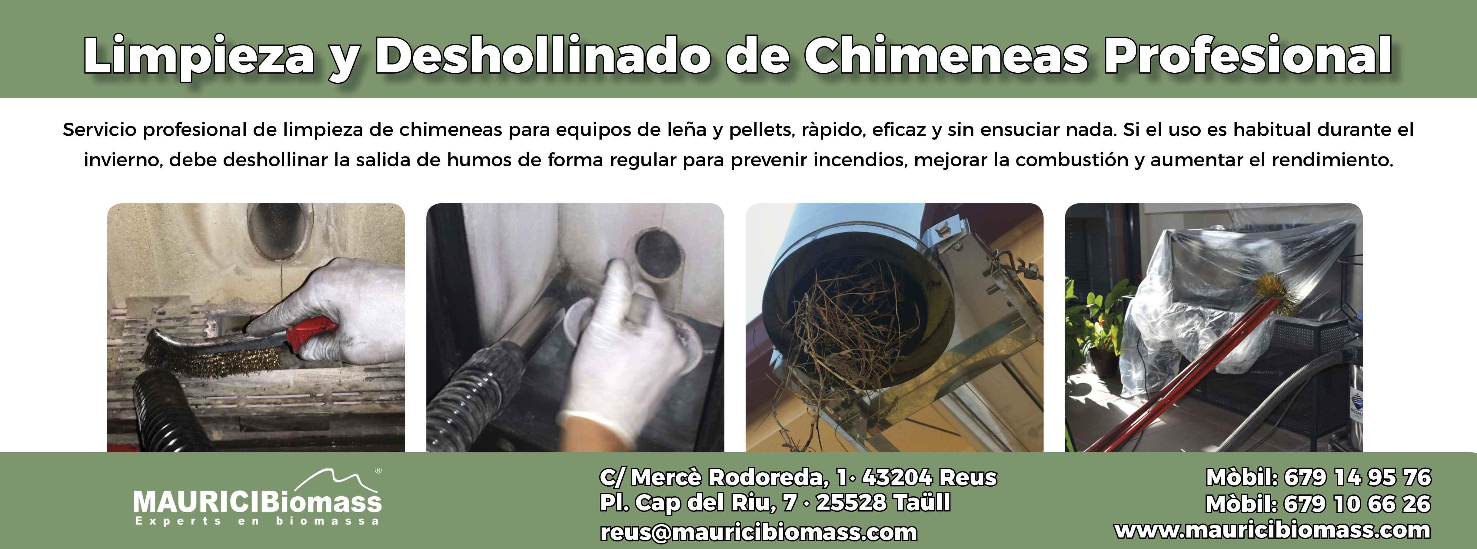 Limpieza y Deshollinado de Chimeneas Professional